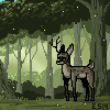 forest by KATEBOG