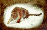 Tigr2 by zeldis