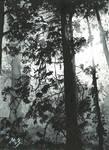 Chernbelpeyzazs
