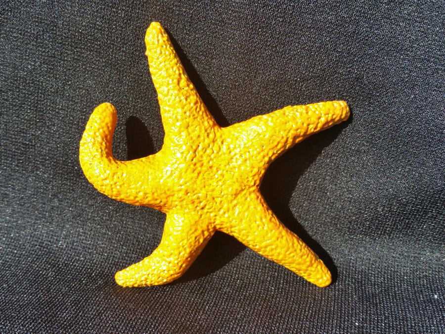 Handmade polymer clay starfish wall hanging by kindcowgirl23 on ...