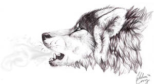 Breathe by Muse-Dog