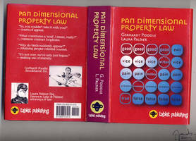 Pan Dimensional Property Law by jacobsteel