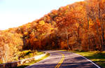 Fall Colors of Skyline Drive