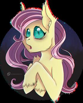 Surprised Flutterbat