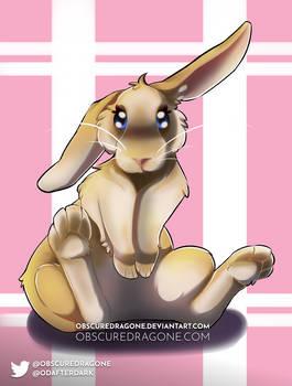 Quicc Bunny