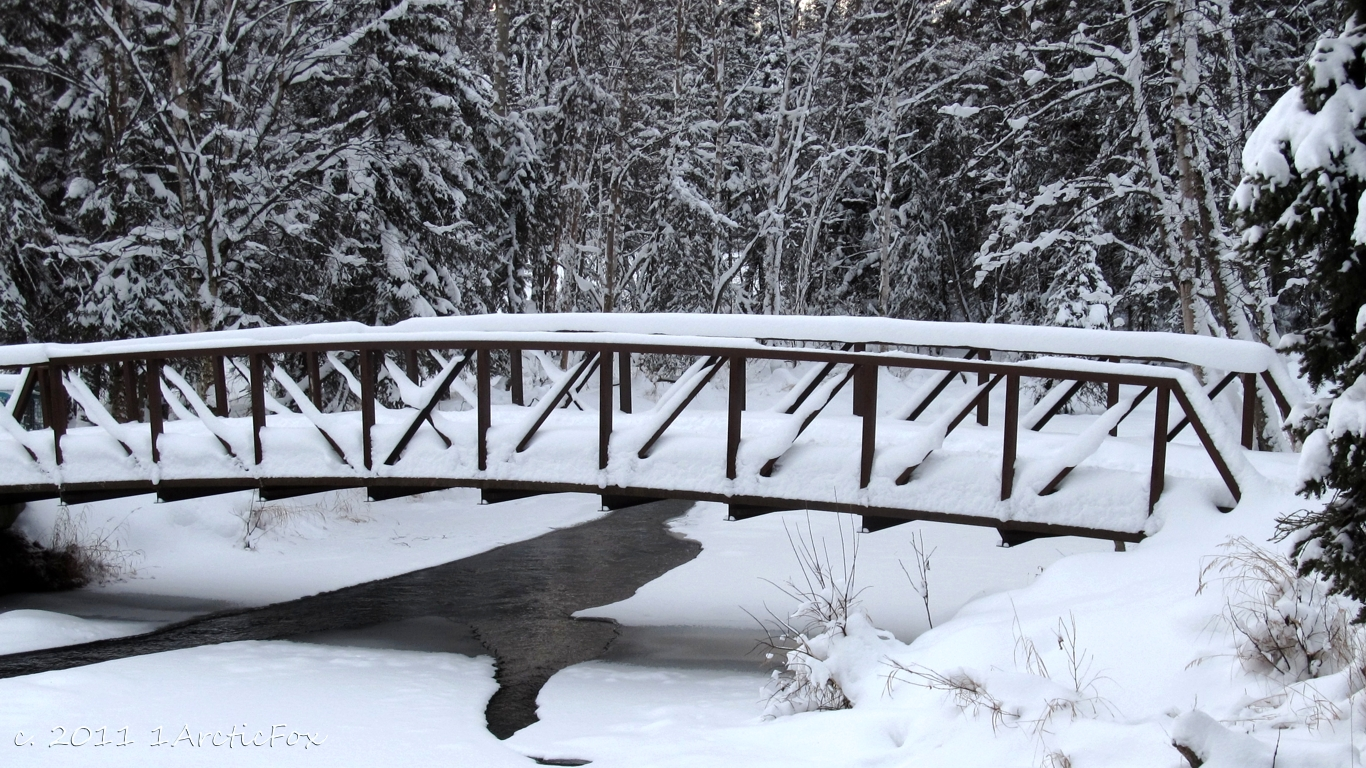 BRIDGE OVER FREEZING WATER by 1arcticfox