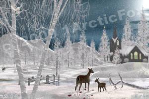 ALASKA BUSH CHRISTMAS by 1arcticfox