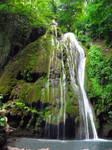 Sphagnous waterfall