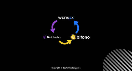 RaidenBO - Wefinex - Bitono