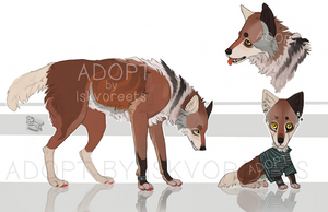 desidn adopt (OPEN) by ISKVOREETS