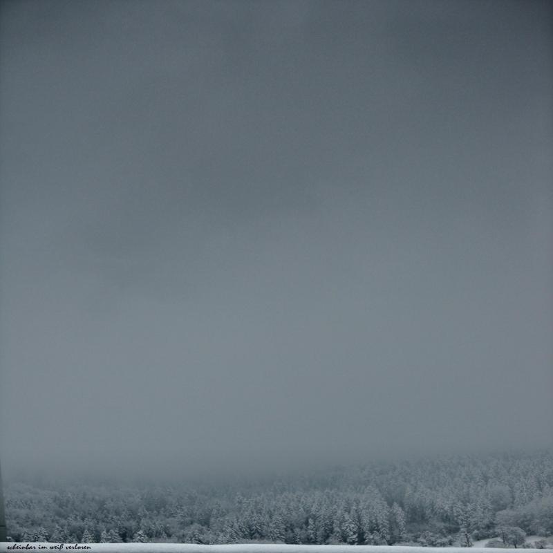 lost in the white by scheinbar