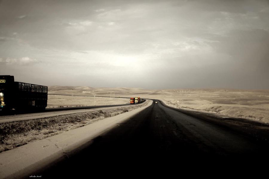 Living Desert by scheinbar