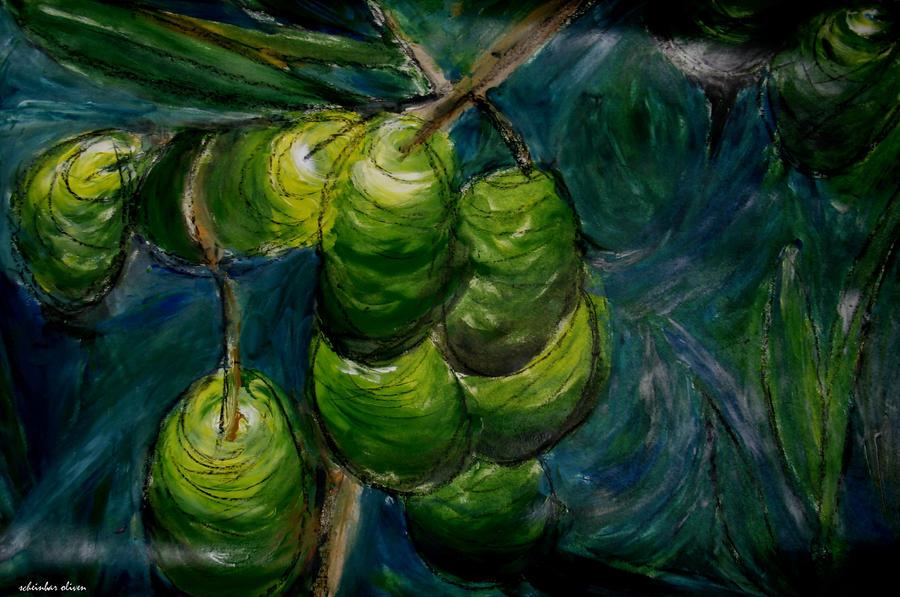 oliven by scheinbar