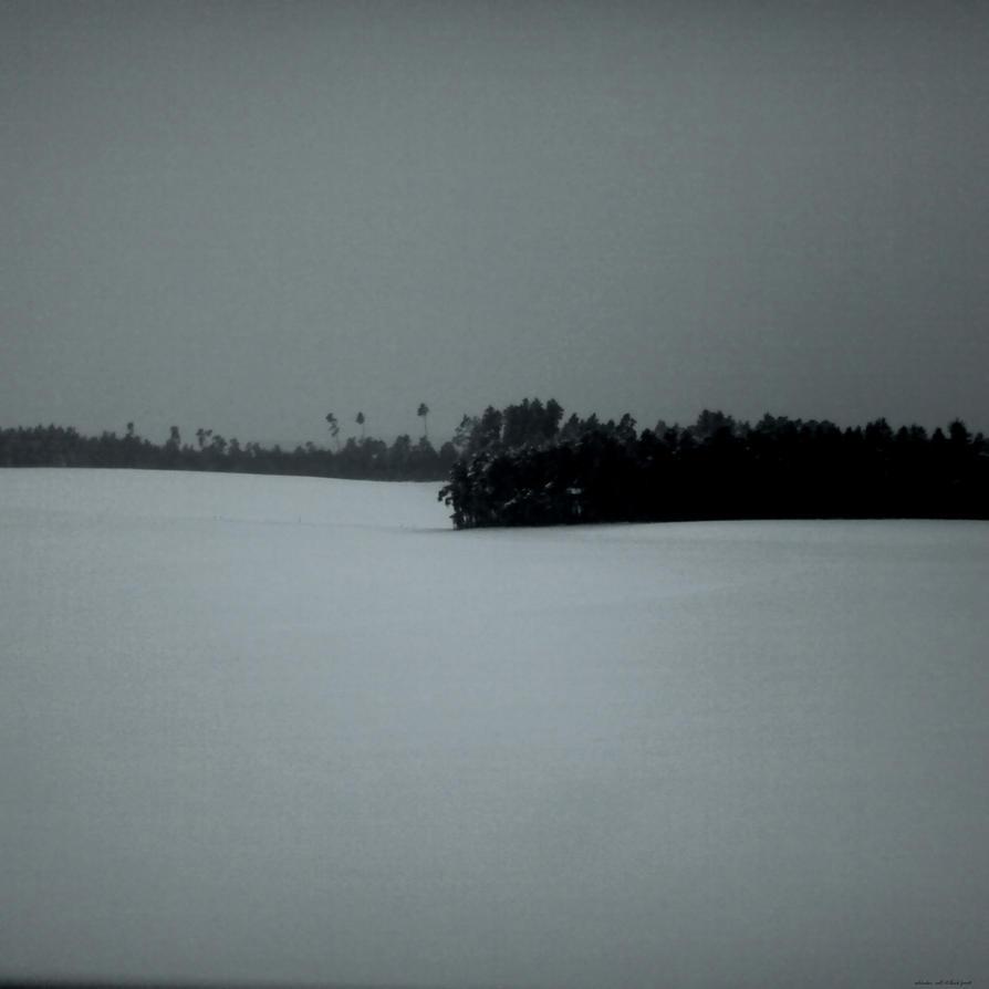 call it black forest by scheinbar