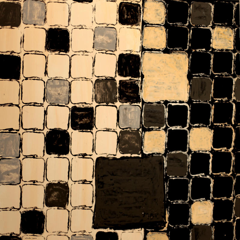 squares in a square - captured by scheinbar