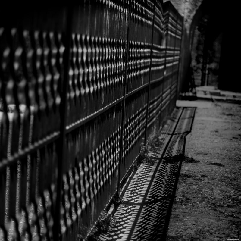 the fence by scheinbar