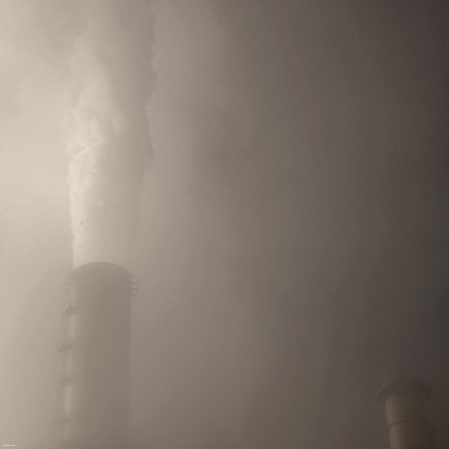 steam by scheinbar