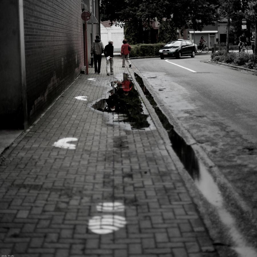 the walker by scheinbar