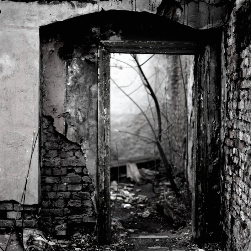 free entrance into grey by scheinbar