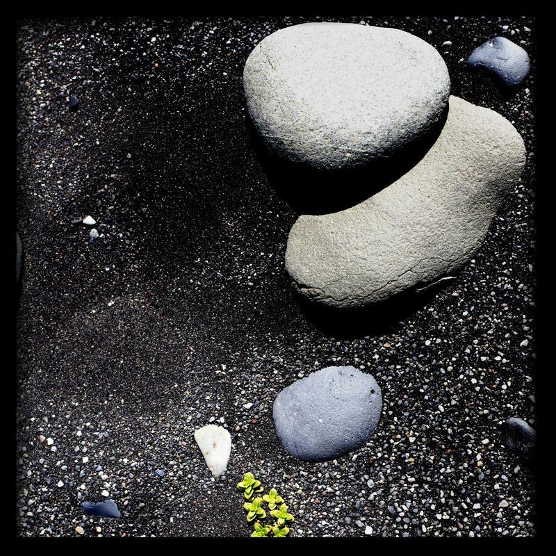zen by scheinbar