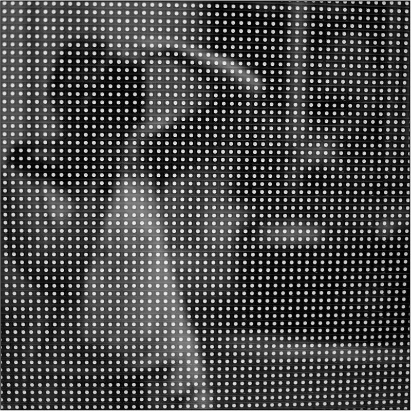 scheinbar's Profile Picture