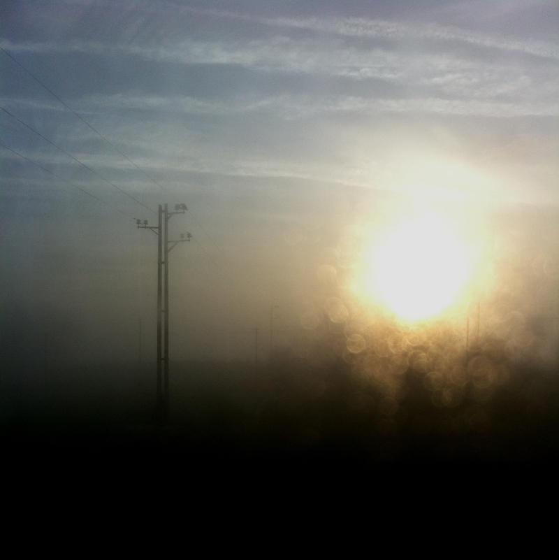 Sundrops by scheinbar