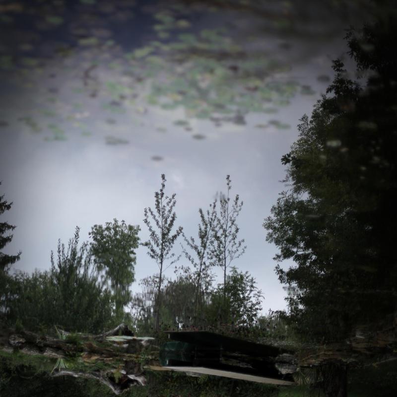 underwater by scheinbar