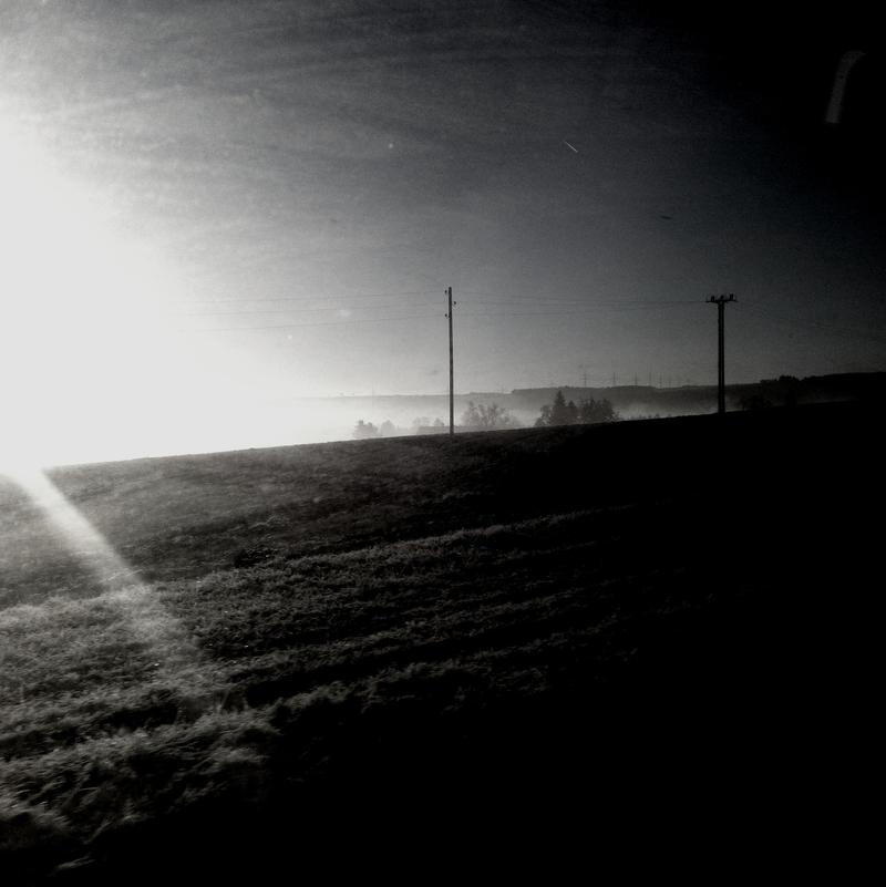In White Shadows by scheinbar