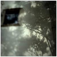 Shadows by scheinbar