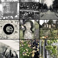 one day in my life - juedischer Friedhof Mannheim by scheinbar