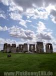 Stonehenge 2008