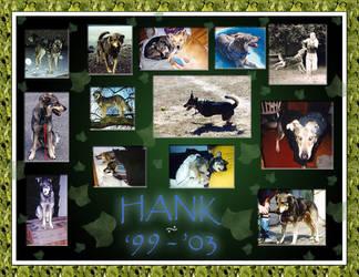 Hank's memorial by nnys-daughter