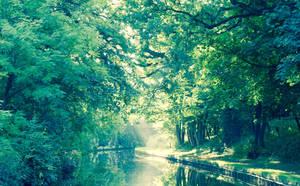 Llangollen Canal - 4