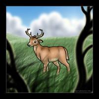 Whitetail Deer by kaykaykit