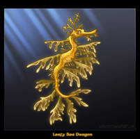 Leafy Sea Dragon by kaykaykit
