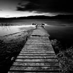 bridge in the dark by zavas