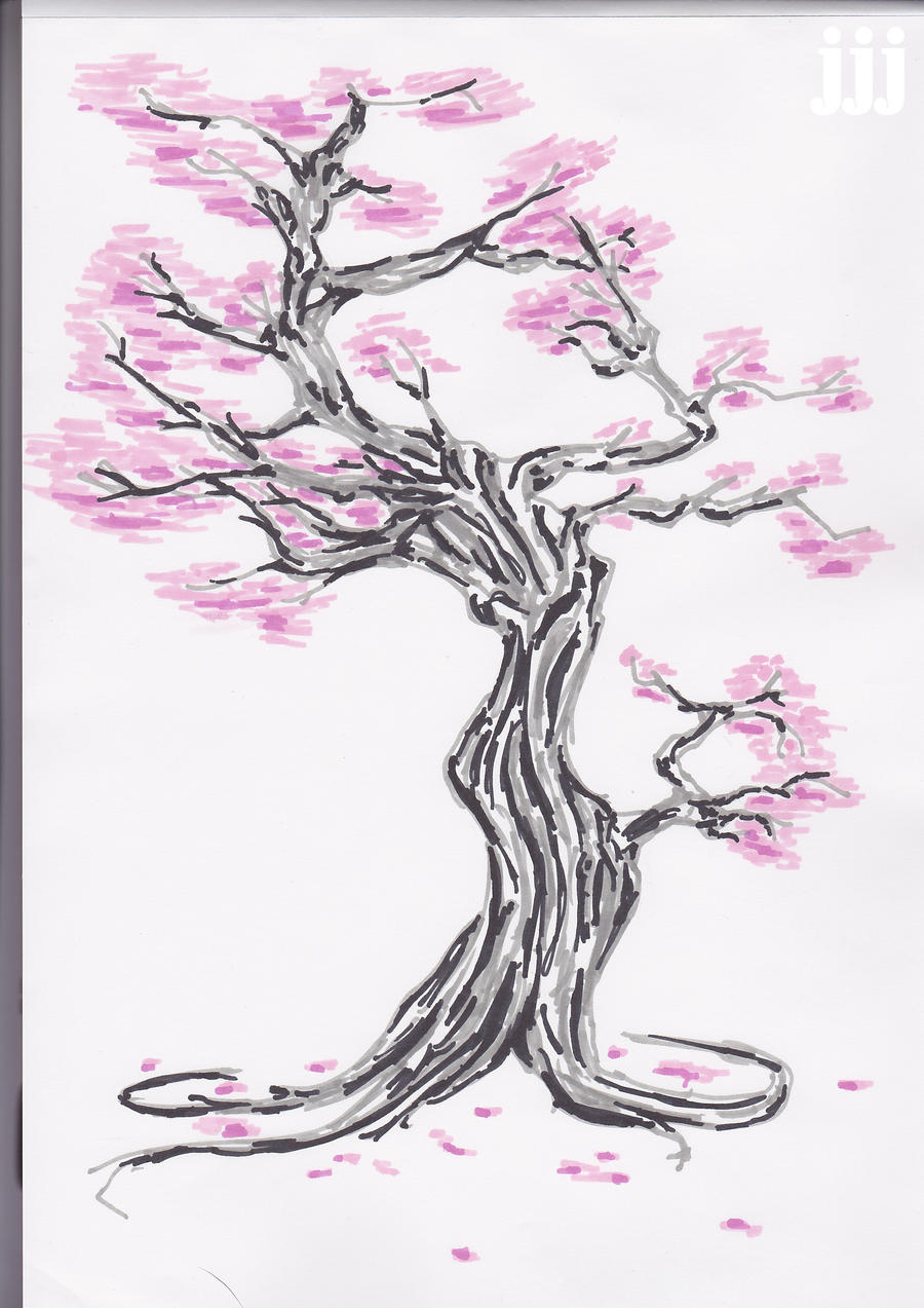 Blossom Tree Drawing: Cherry Blossom Tree Drawing Step By Step