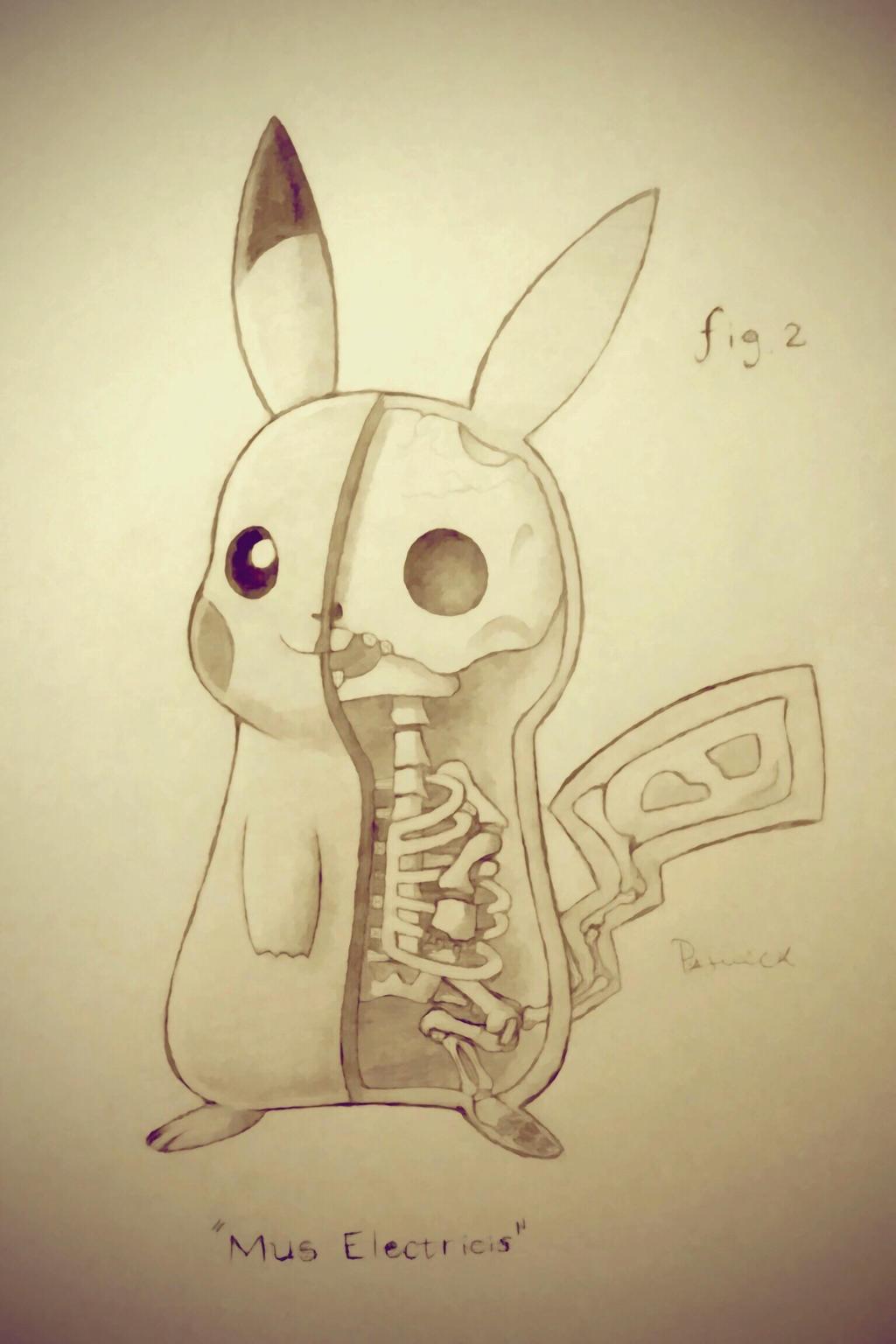 Anatomical Study #2: Mus Electricis (Pikachu) by PurbinderART on ...