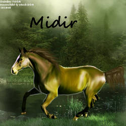 Midir by midholly