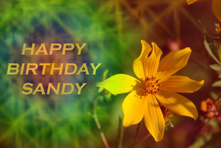 happy birthday sandy images