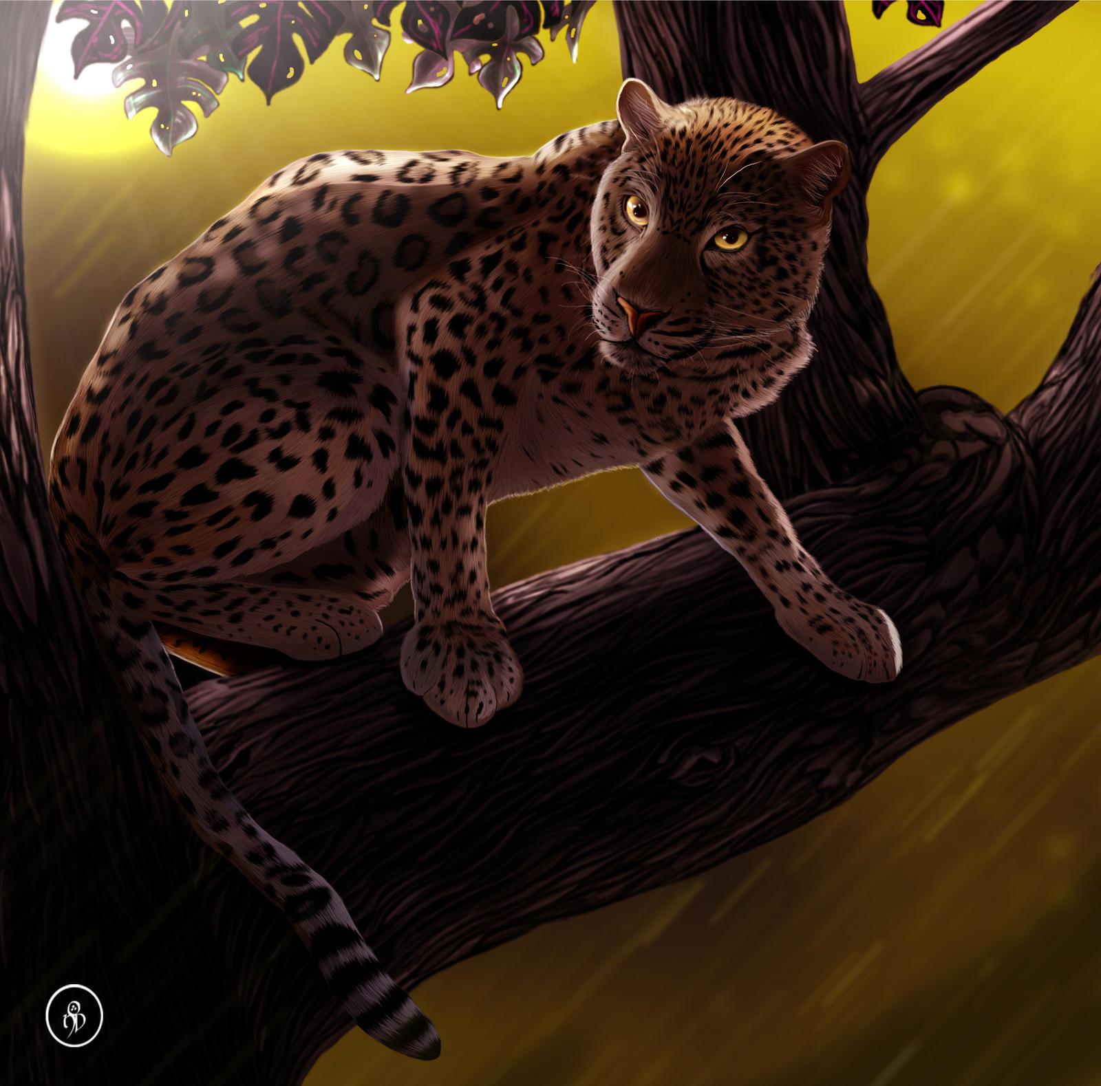 Prey 39 s last vision update by ondjage on deviantart - Combien de temps un chat peut disparaitre ...