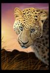Jag's Kingdom