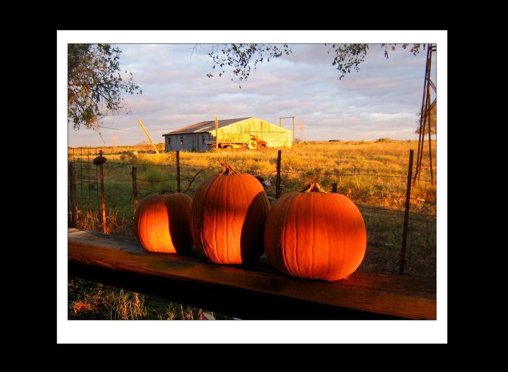 Halloween by brytts-gotno-wytts