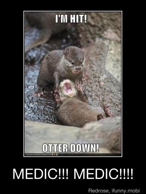 Medic Otter by Foxy-teh-sexy-fox