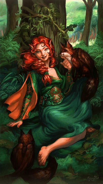 The Fox Grove by aridante