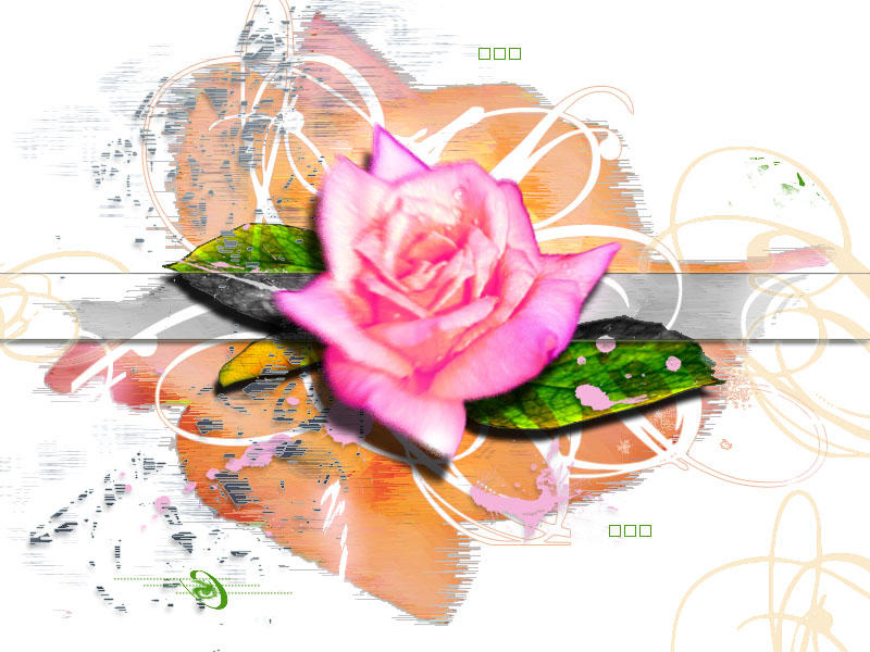 rose by disorder