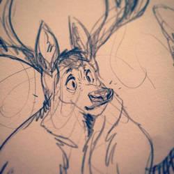 Elk Face
