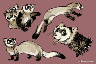 Ferret Stickers by goosezilla