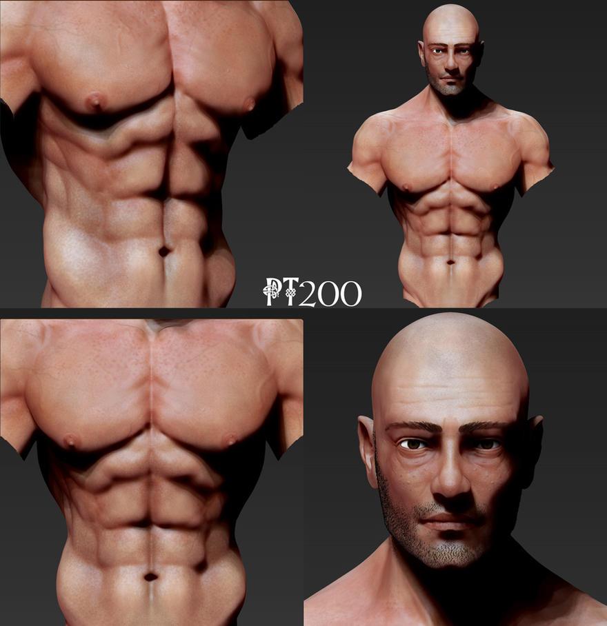 Anatomy Study Bust by PT200