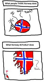 What Norway actually does